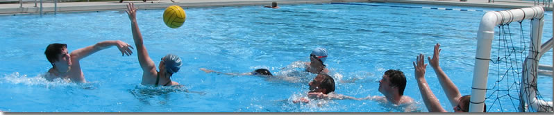 Picture of Water Polo